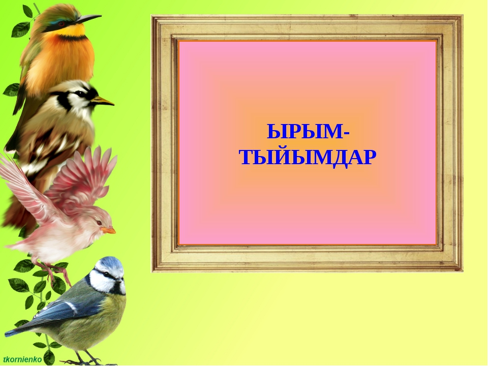 ЫРЫМ- ТЫЙЫМДАР