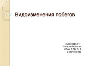 Видоизменения побегов Хусаинова Р.Т. Учитель биологии МОАУ СОШ № 2 с. Исянгул