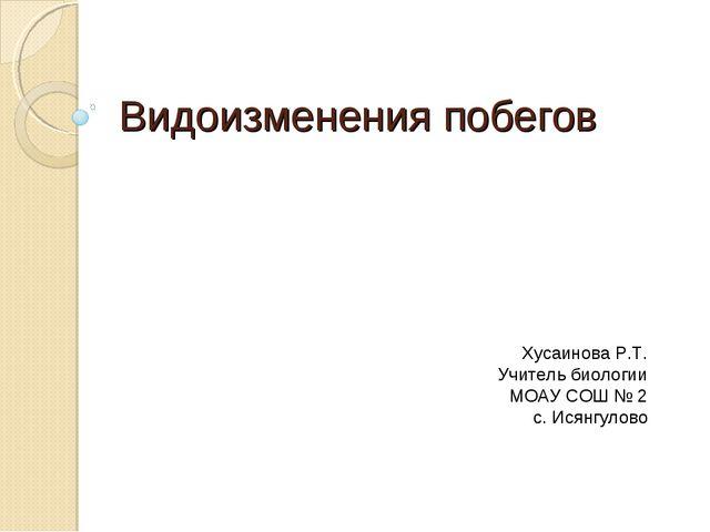 Видоизменения побегов Хусаинова Р.Т. Учитель биологии МОАУ СОШ № 2 с. Исянгул...