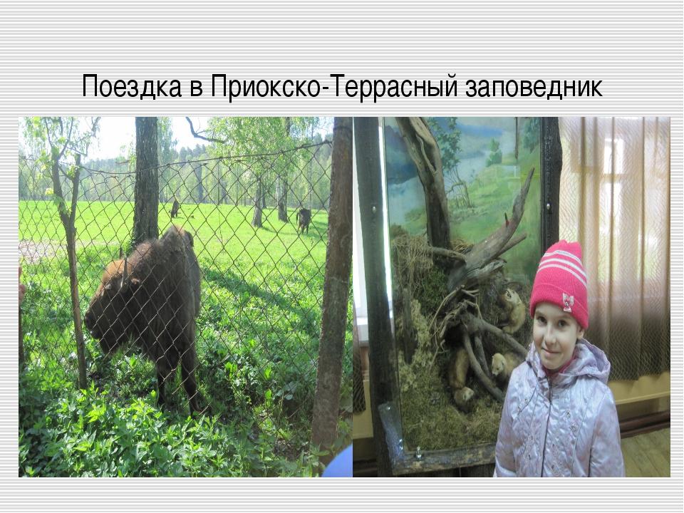 Поездка в Приокско-Террасный заповедник