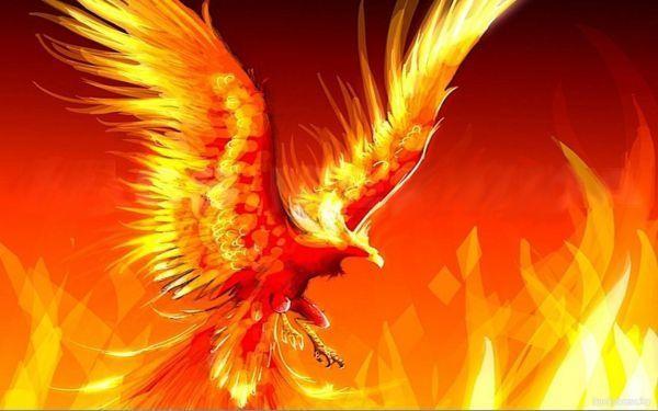 http://www.zagadochnaya-sila.ru/images/stories/picture/fenix/phoenix_021.jpg