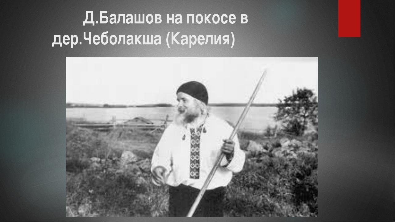 Д.Балашов на покосе в дер.Чеболакша (Карелия)
