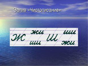 Залив «Чистописание»