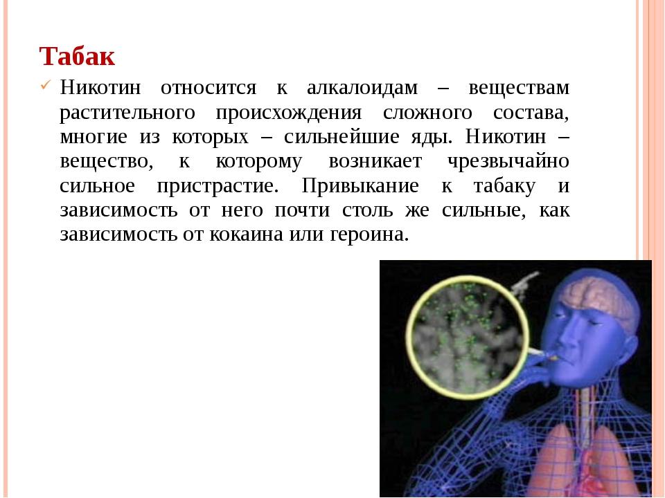 Табак Никотин относится к алкалоидам – веществам растительного происхождения...