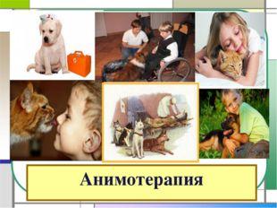 Анимотерапия
