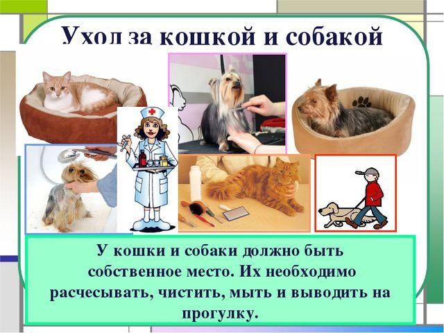 Уход за кошкой и собакой У кошки и собаки должно быть собственное место. Их н...