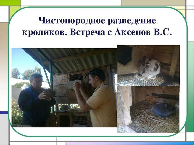 Чистопородное разведение кроликов. Встреча с Аксенов В.С.