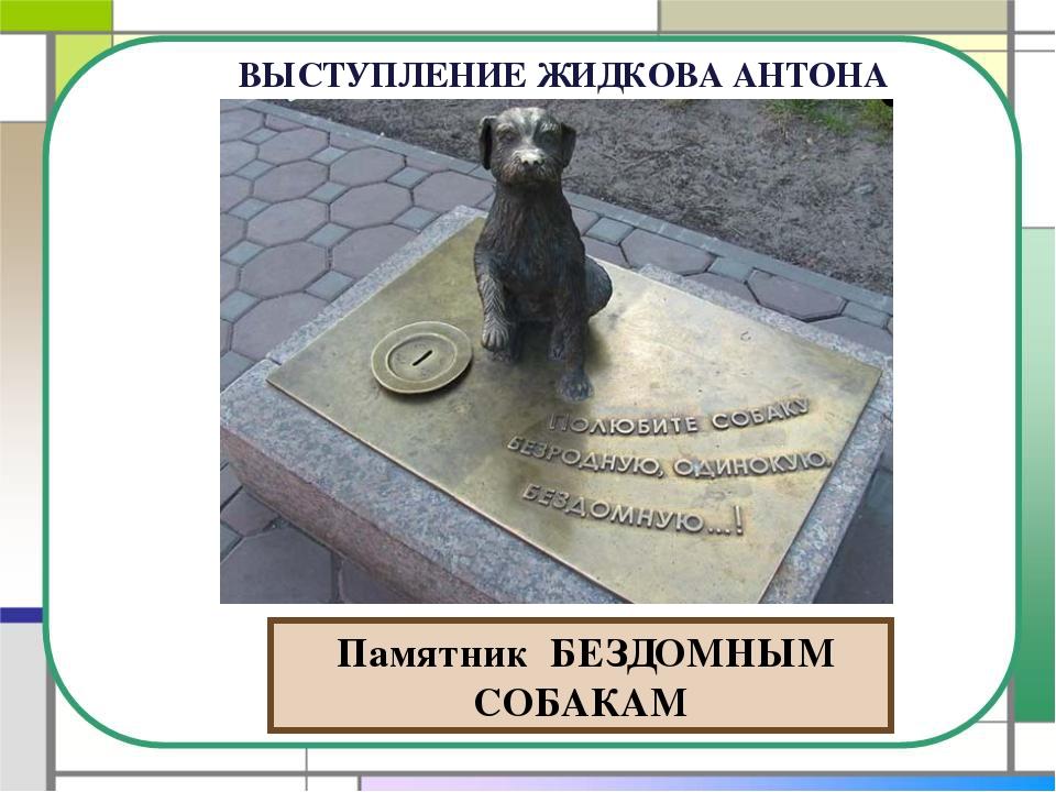 Памятник БЕЗДОМНЫМ СОБАКАМ ВЫСТУПЛЕНИЕ ЖИДКОВА АНТОНА