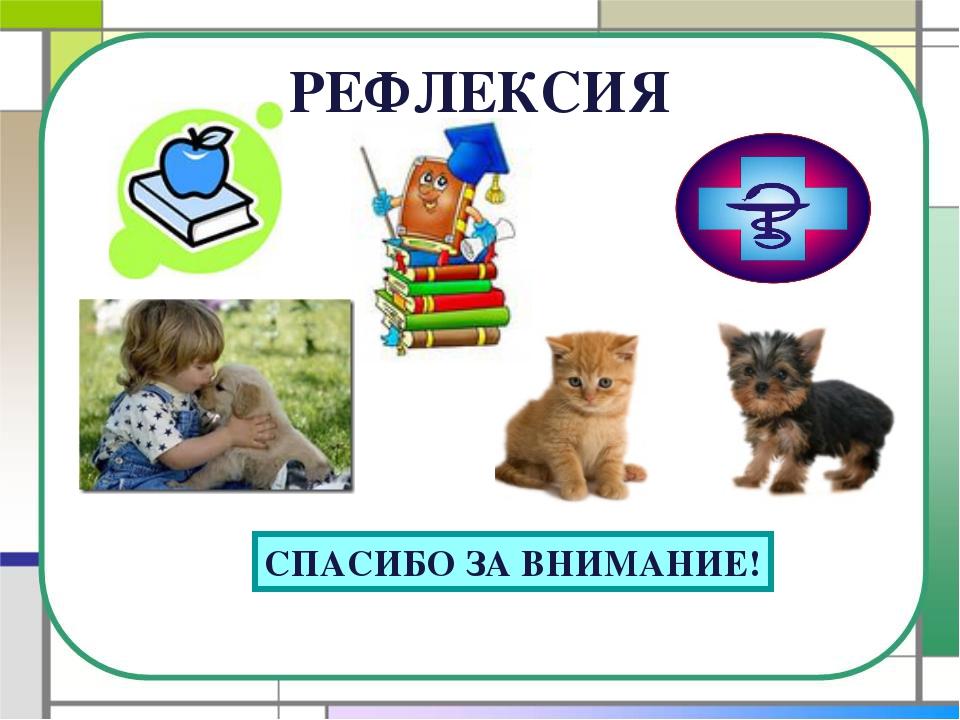 РЕФЛЕКСИЯ СПАСИБО ЗА ВНИМАНИЕ!
