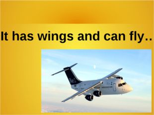It has wings and can fly…