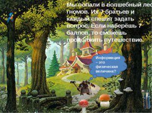 Мы попали в волшебный лес гномов. Их 7 братьев и каждый спешит задать вопрос.