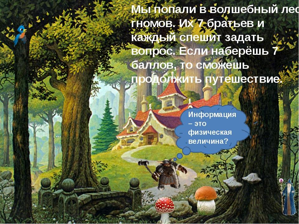 Мы попали в волшебный лес гномов. Их 7 братьев и каждый спешит задать вопрос....