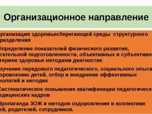 Организационное направление 1. Организация здоровьесберегающей среды структур