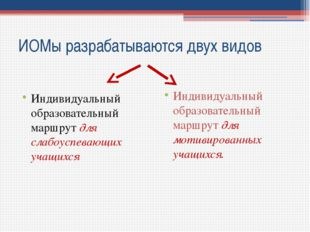 ИОМы разрабатываются двух видов Индивидуальный образовательный маршрут для сл