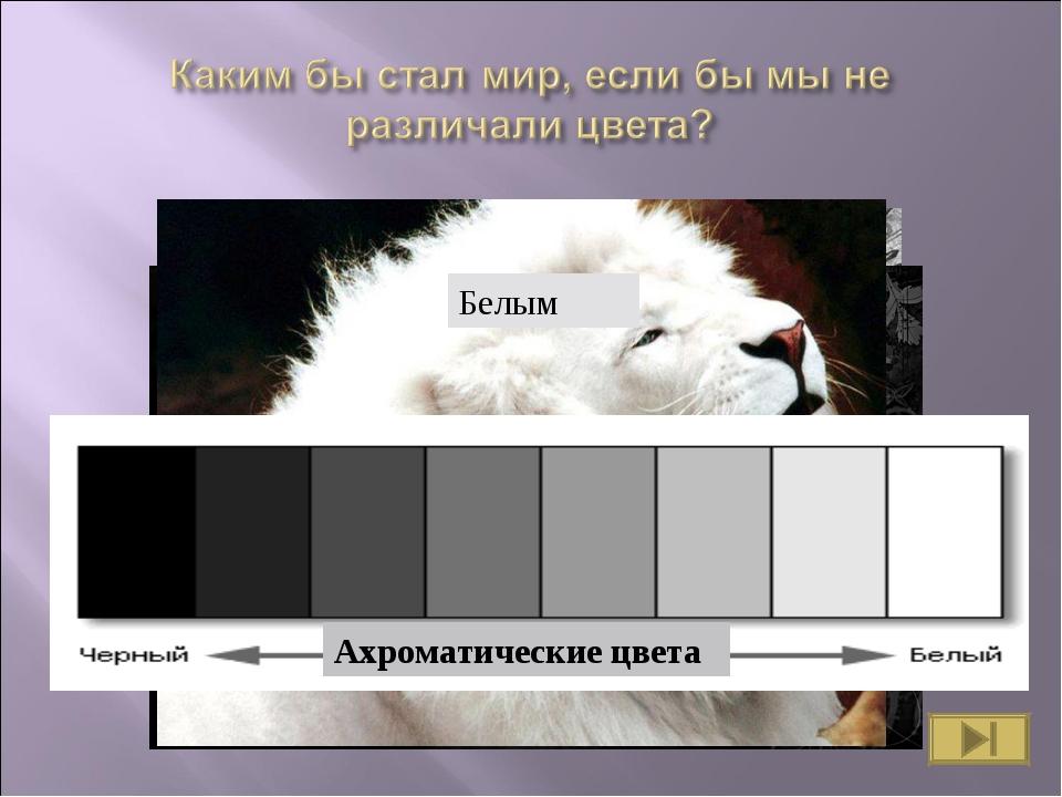 Серым Черным Белым Какое все унылое! Ахроматические цвета