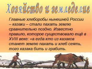 Главные хлеборобы нынешней России – казаки – стали пахать землю сравнительно