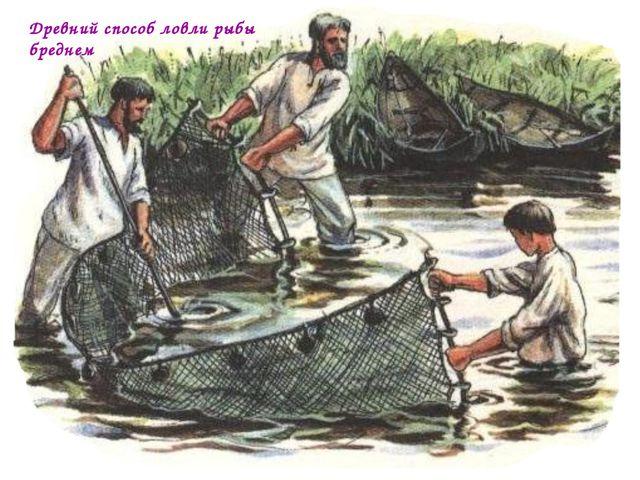 Древний способ ловли рыбы бреднем