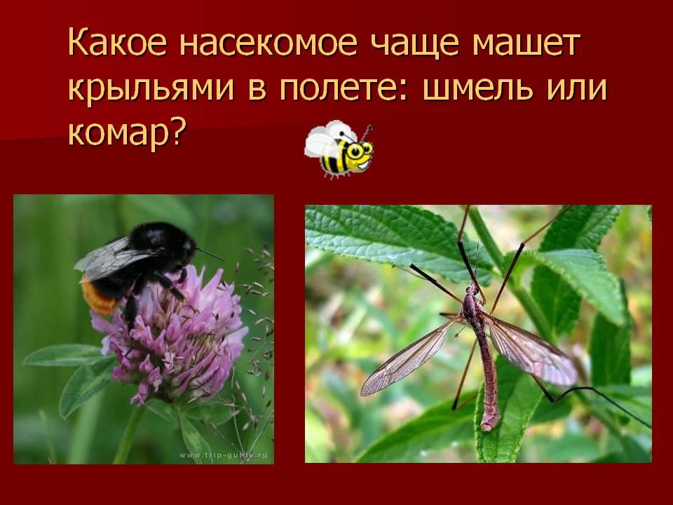 hello_html_m495d1314.jpg