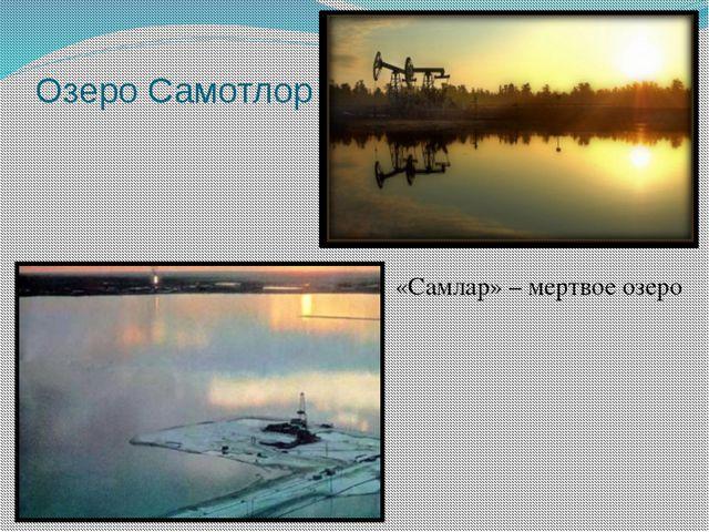 Озеро Самотлор «Самлар» – мертвое озеро