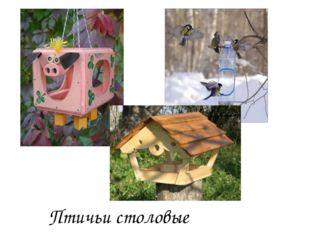 Птичьи столовые