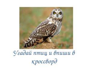 Угадай птиц и впиши в кроссворд