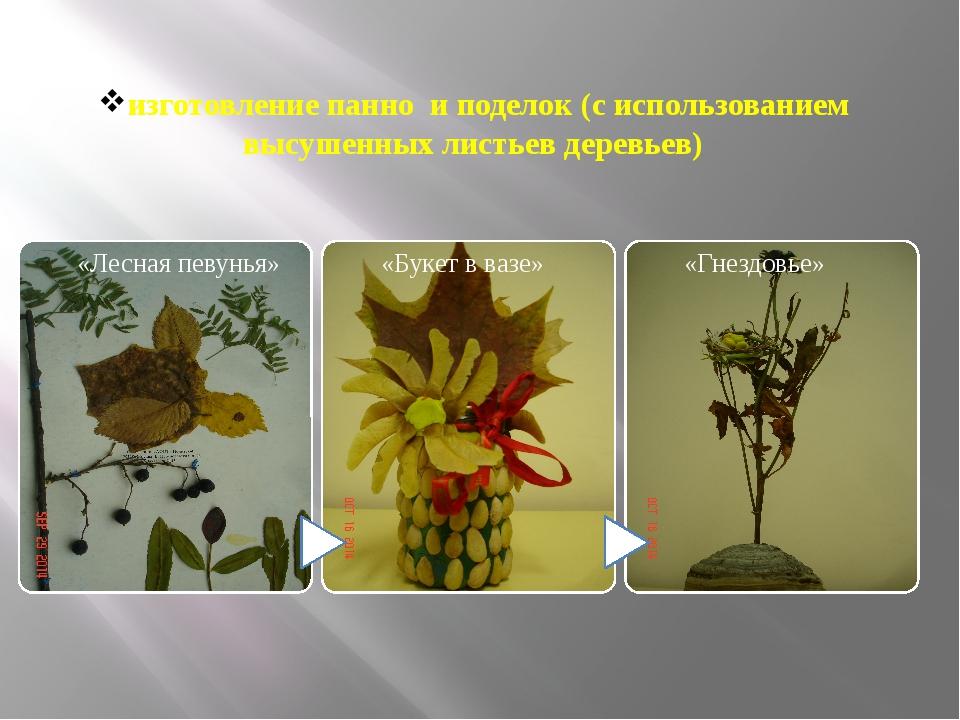 изготовление панно и поделок (с использованием высушенных листьев деревьев)
