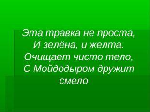 Эта травка не проста, И зелёна, и желта. Очищает чисто тело, С Мойдодыром дру