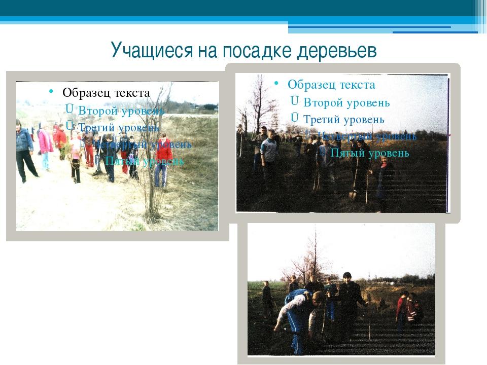 Учащиеся на посадке деревьев