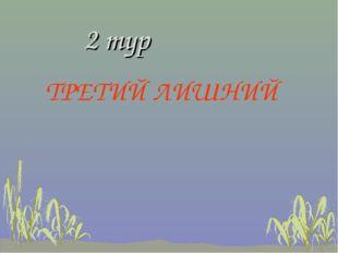 2 тур ТРЕТИЙ ЛИШНИЙ