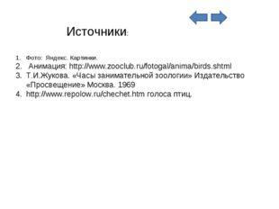 Фото: Яндекс. Картинки. Анимация: http://www.zooclub.ru/fotogal/anima/birds.s