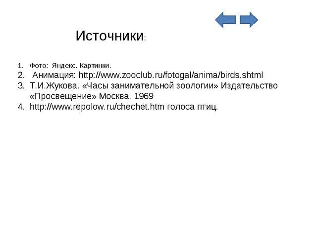 Фото: Яндекс. Картинки. Анимация: http://www.zooclub.ru/fotogal/anima/birds.s...