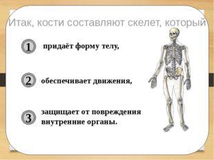 придаёт форму телу, обеспечивает движения, защищает от повреждения внутренни