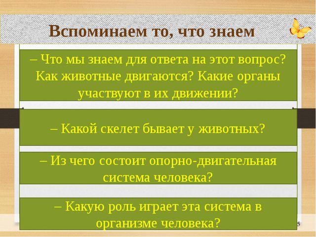 Вспоминаем то, что знаем – Что мы знаем для ответа на этот вопрос? Как живот...
