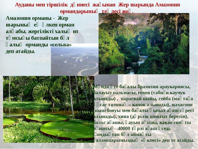 Амазония орманы - Жер шарының ең үлкен орман алқабы, жергілікті халық ит тұмс...