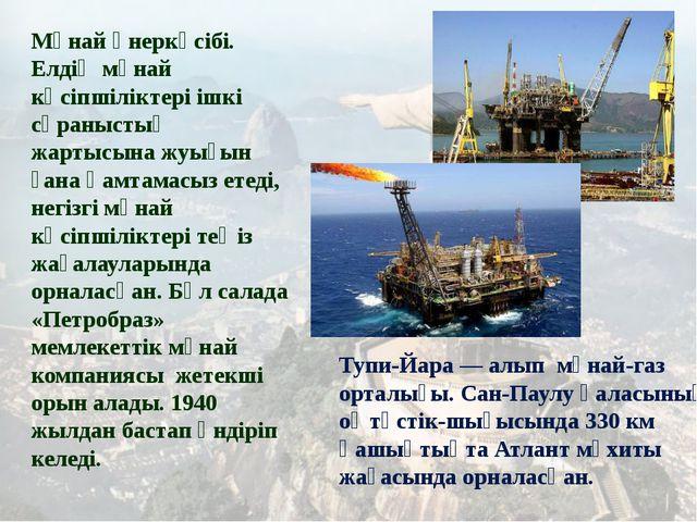 Мұнай өнеркәсібі. Елдің мұнай кәсіпшіліктері ішкі сұраныстың жартысына жуығы...