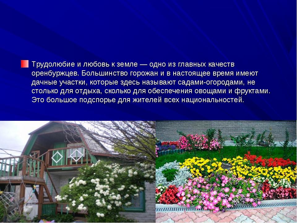 Трудолюбие и любовь к земле — одно из главных качеств оренбуржцев. Большинств...