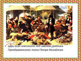 царь ехал инкогнито под именем урядника Преображенского полка Петра Михайлова
