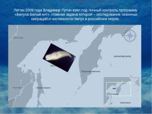 Летом 2009 года Владимир Путин взял под личный контроль программу «Белуха-Бел