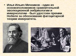 Илья Ильич Мечников - один из основоположников сравнительной эволюционной эмб