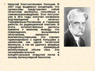 Николай Константинович Кольцов. В 1927 году выдвинул концепцию, что хромосомы