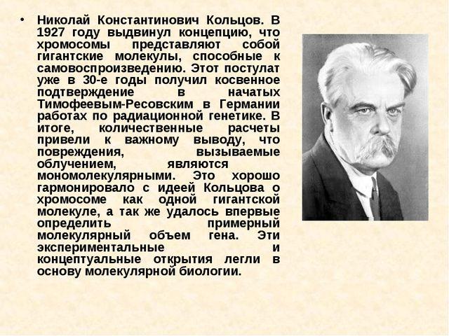 Николай Константинович Кольцов. В 1927 году выдвинул концепцию, что хромосомы...