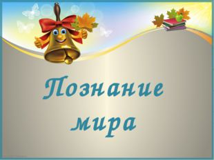 Познание мира FokinaLida.75@mail.ru