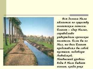 Вся долина Нила является по существу гигантским оазисом. Египет – «дар Нила»