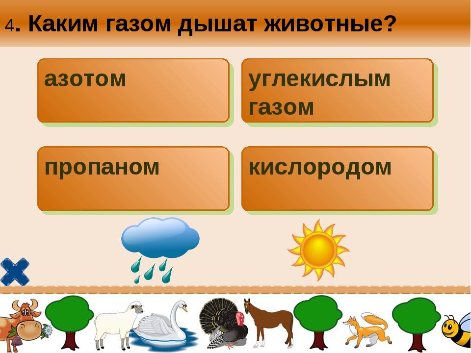4. Каким газом дышат животные? азотом углекислым газом пропаном кислородом
