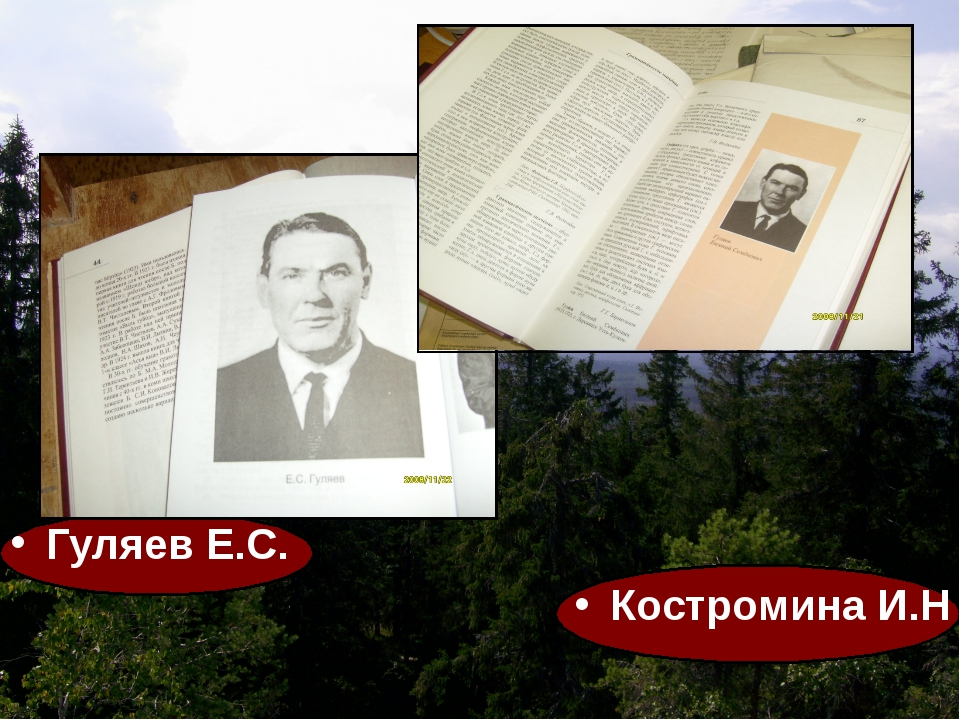 Гуляев Е.С. Костромина И.Н