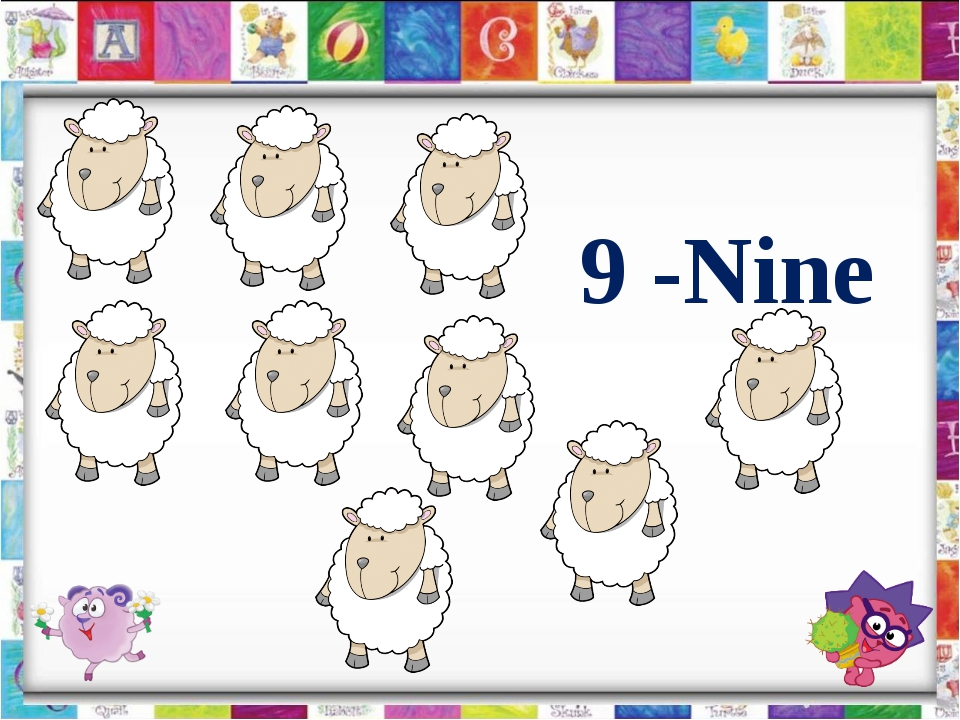 9 -Nine