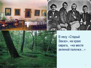 В лесу «Старый Заказ», на краю оврага, «на месте зеленой палочки…»