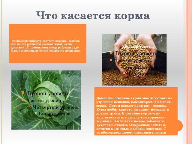 Что касается корма Рацион питания кур состоит из зерна , жмыха или шрота рыб...