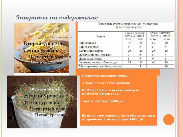 Затраты на содержание Стоимость травяного корма: 1 тюк сена стоит 500 рублей...