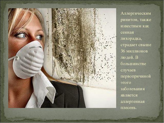 Аллергическим ринитом, также известным как сенная лихорадка, страдает свыше 3...
